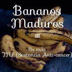 Un estudio científico japonés aportó a la lucha contra el cáncer revelando que los bananos o plátanos maduros producen una sustancia llamada TNF (factor de necrosis tumoral) que tiene la capacidad para combatir las células mutantes.  El grado de efecto anti-cáncer va en directa relación con la madurez de la fruta, por eso entre más negros más efectivos. Los plátanos amarillos con la piel con manchas oscuras son 8 veces más eficaces que los más verdes.