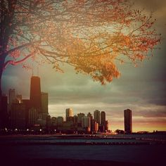 Chicago in the fall.