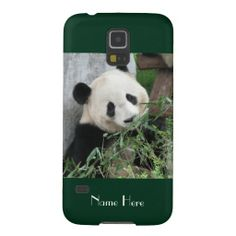 "Samsung Galaxy S5 Case Giant Panda Green - This case for the Samsung Galaxy S5 is part of our ""Giant Pandas"" collection, which includes matching kitchen items, other gifts, greeting cards, and wrapping paper. What a wonderful complement for your new Samsung Galaxy S5. Wonderful gift for panda lovers. Original photograph by Marcia Socolik, taken in Chengdu, China. All Rights Reserved © 2014 Alan & Marcia Socolik. #GalaxyS5 #GiantPandas #Pandas"
