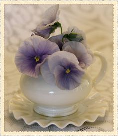 "Pansy love- make me think of my grandma- she always said pansies have a little ""face"""