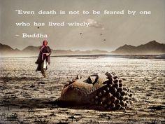 Top wisdom quotes images