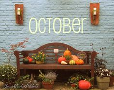 Love the pumpkin stack on the bench and the mum!  Fall please hurry!