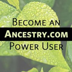Reap the rewards of expanding your online family history research to these 23 not-just-for-genealogy websites. Genealogy Websites, Genealogy Humor, Genealogy Chart, Genealogy Research, Family Genealogy, Ancestry Dna, My Family History, Education Humor, Family Search
