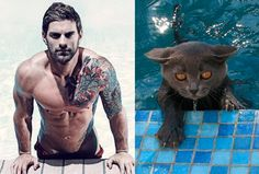 http://guff.com/when-gorgeous-guys-pose-like-cute-cats/surfing-usa