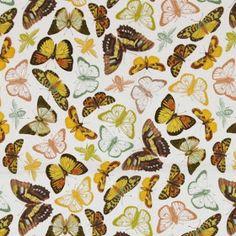 Papillion by michael millar