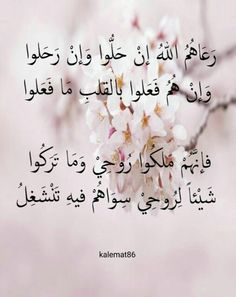شعر عربي جميل Poetry Quotes, Words Quotes, Life Quotes, Beautiful Arabic Words, Arabic Love Quotes, Sweet Words, Love Words, Arabic Poetry, Islamic Quotes Wallpaper