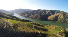 Portugal is the most underrated wine region - Drink Portuguese Wine - Google+