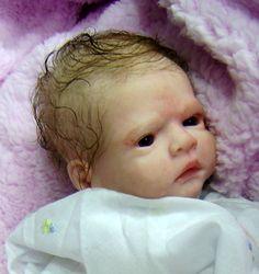 Morgan and Perez bring us baby Fern
