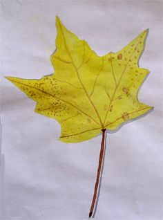 Fall leaves watercolors for middle school art lesson