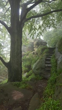 Druids Caves, Birchover:, Derbyshire, England (i like the stairs) Beautiful World, Beautiful Places, Landscape Photography, Nature Photography, Photography Ideas, Portrait Photography, Wedding Photography, Nature Aesthetic, Nature Pictures