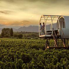 Luxury Wine Hotel & Spa in Mendoza, Argentina Mendoza, Beach Hotels, Beach Resorts, Wine Hotel, Margaret River Wineries, Malbec Wine, Unusual Hotels, Amazing Hotels, Spa Hotel