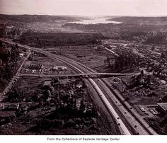 bellevue 1969