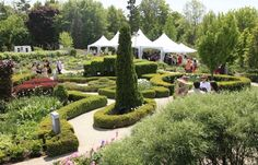 Toronto Botanical Garden is one of those venues that was designed to blur the line between the indoors and outdoors. Their event spaces and adjoining garden courtyards provide the perfect setting for wedding ceremonies and receptions. If your vision Garden Venue, Garden Park, Toronto, Mason Jar Herb Garden, Ontario Parks, Outdoor Wedding Venues, Wedding Ceremonies, Botanical Gardens Wedding, Garden Steps