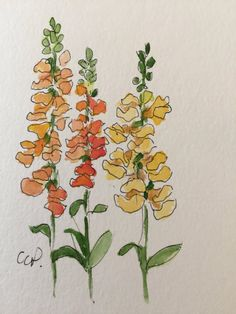 Yellow Snapdragons Watercolor Card / Hand Painted Watercolor Card This card is an original not a print  I have used ink and watercolor on this 5x7 card. I have painted it on heavy 140* card stock. Give the fresh flowers that will last !  Comes with a matching envelope in a protective sleeve
