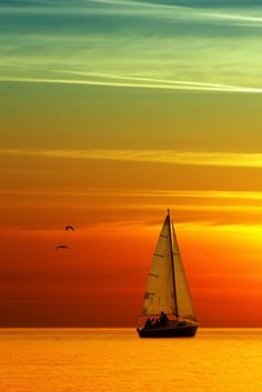 Let's sail away and see where the ocean takes us!