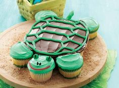 Turtle shaped cake made of cupcakes-too cool!!