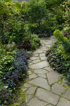 flagstone path with moss.. and beautiful landscaping :)