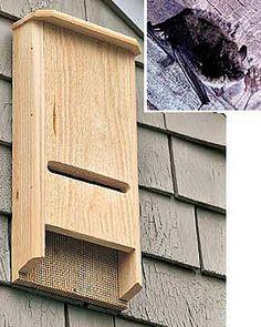Bat House - Bat Box - Bat-Chelor Pad | Gardener's Supply