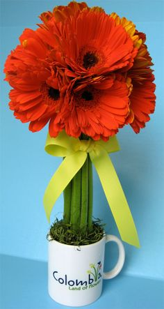 Gerber Daisy Arrangement tutorial