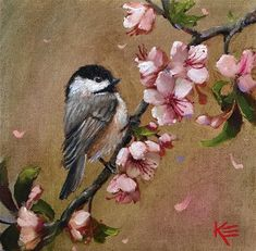 "Daily Paintworks - ""Chickadee & Blossoms"" - Original Fine Art for Sale - © Krista Eaton Bird Paintings On Canvas, Bird Painting Acrylic, Bird Canvas, Watercolor Bird, Animal Paintings, Painting & Drawing, Canvas Art, Cherry Blossom Painting, Cherry Blossoms"