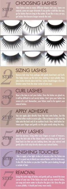 All About Lashes infographic  #lashes #falseeyelashes #fakeeyelashes