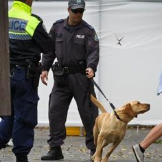 Sniffer dog operations are inaccurate, ineffective, expensive, open to bias, used to target vulnerable people and lead to dangerous conduct like loading up. Now, one member of parliament is taking steps to get rid of them.