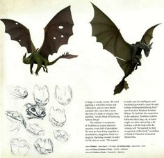 Dragon Trainer  (How To Train Your Dragon) https://fbcdn-sphotos-e-a.akamaihd.net/hphotos-ak-xfp1/t1.0-9/10394121_817263691641319_210509269414404217_n.jpg ★ || CHARACTER DESIGN REFERENCES | マンガの描き方 • Find more artworks at https://www.facebook.com/CharacterDesignReferences  http://www.pinterest.com/characterdesigh and learn how to draw: #concept #art #animation #anime #comics || ★