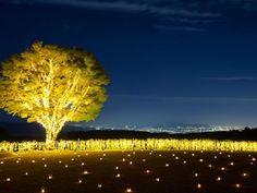 湖のオーベルジュ「星野リゾート ロテルド比叡」冬は限定中庭キャンドルナイト | 京都府 | Travel.jp[たびねす]