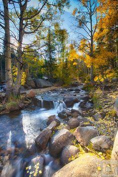 'Whispers Amongst The Light', Glacier Creek, Rocky Moutain National Park, Colorado