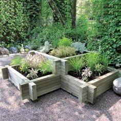 Turn a wooden planter into something special by adding a fresh