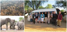 We pride ourselves in keeping our finger on the pulse of Southern African luxury, with this in mind we recently sent one of our travel consultants to Namibia to check out what's new and what's hot in the luxury space. Luxury Travel, Us Travel, Road Trip, Elephant, African, Concept, Road Trips, Elephants