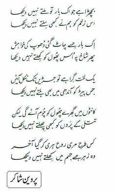 Image result for akbar allahabadi shayari in urdu