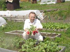 przestrzeń Home Vegetable Garden, Pergola Patio, Growing Vegetables, Garden Design, World, Flowers, Plants, Farmer, Aromatherapy