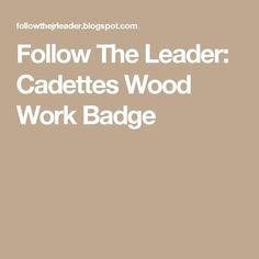 so I am pretty upscale savvy and good with power tools, but teaching a wood working badge to my Cadettes had me stumped. Cadette Girl Scout Badges, Cadette Badges, Girl Scout Activities, Work Badge, Follow The Leader, Daisy Girl Scouts, Day Camp, Woodworking, Clueless