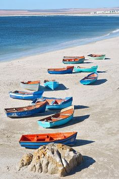 South Africa | West Coast Tour (3 Days) - Cape Town Tours | Paternoster is a quant town with much to offer visitors.