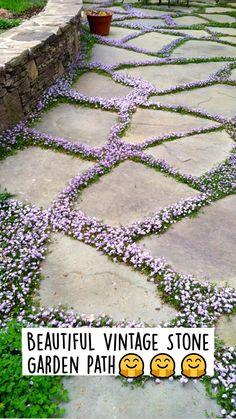Stone Garden Paths, Garden Stones, Stone Path, Lawn And Garden, Garden Art, Garden Design, Small Backyard Design, Small Backyard Pools, Side Yard Landscaping