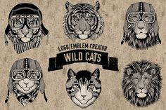 Emblem, logo template Wild cats by Print Digital Art on @Graphicsauthor