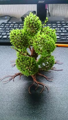 #WhatWillYouCreate Tree