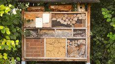 Hmyzí domečky se opět vrací na výsluní