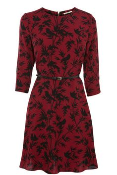 Oasis Shadow Bird Java Dress, perfect this autumn with black tights and leather ankle boots Red Black Dress, Yellow Dress, Black Belt, Oasis Fashion, Winter Wedding Guests, Bird Dress, Business Fashion, Business Wear, Sleeve Styles