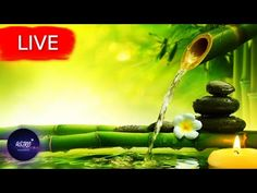 🔴 Relaxing Music, Meditation Music, Healing Music, Spa Music, Zen, Sleep, Yoga, Study MusicWelcome everyone! I hope your are having an amazing Day/Night! Get back loosen up your body take a deep breath and enjoy my music with the beautiful imagery from all around the world!   All music composed by Astro Universe - Relaxing Music  Astro Universe - Relaxing Music presents a relaxing music video with beautiful nature and calm music for meditation  deep sleep  music therapy. If you require… Meditation Music, Meditation For Anxiety, Healing Meditation, Sleep Therapy, Music Therapy, Calming Music, Relaxing Music, Deep Sleep Music, Stress Relief Music