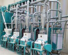 20t maize mill machine #maizemillmachine  #maizeflourmillmachine  #maizemilling  #maizemillingmill