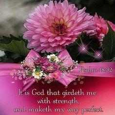 Psalm 18:32 KJV …