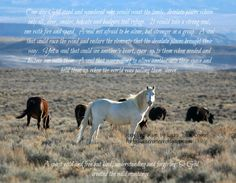Horse Poems, Badger, Lonely, Racing, Horses, Animals, Running, Animales, Animaux