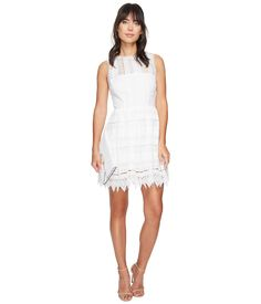 BB DAKOTA Elissa Lace Fit N Flare Dress. #bbdakota #cloth #