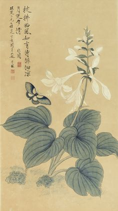 yu fei'an butterfly and Chinese Painting Flowers, Tulip Painting, Chinese Flowers, Plant Illustration, Watercolor Illustration, Illustration Sketches, Botanical Illustration, Watercolor Flowers, Watercolor Art