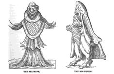 The Most Grotesque Humanoid Monsters of the Early Modern Age Sea Monkeys, Myths & Monsters, Human Oddities, Humanoid Creatures, Legendary Creature, Middle Ages, Art History, Medieval, Horror