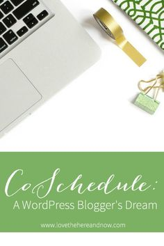 CoSchedule A WordPress Blogger's Dream www.lovethehereandnow.com