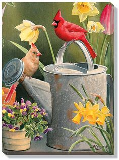Susan Bourdet Garden Delights Cardinals is part of Susan Bourdet Garden Delights Cardinals In Dyi - In this beautiful gallery wrapped canvas, Susan Bourdet has painted a colorful pair of cardinals perched on a watering can in a garden of yellow daffodils