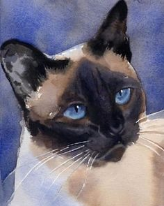 2016 NEW --Siamese Cat art oil inch Handpainted art painting # TOP animal Decor ON CANVAS- accept custom painting Top Paintings, Cheap Paintings, Siamese Dream, Siamese Cats, Apple Head, Cute Cartoon Drawings, Animal Decor, Cat Love, Cat Art